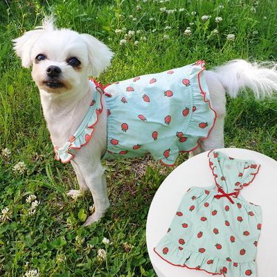 비비드탱크탑 강아지옷 편안한 면티셔츠 애견실내복