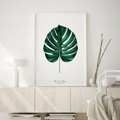 몬스테라 보테니컬 액자 식물 그림 인테리어 50x70 포스터 + 이케아액자