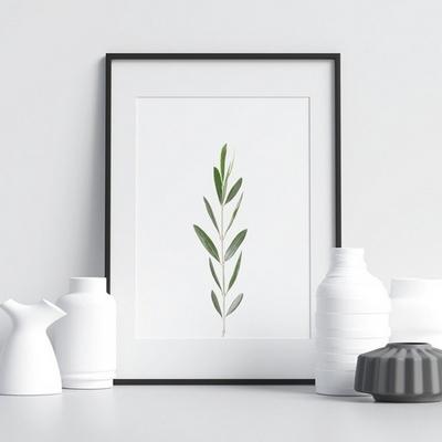 올리브 보테니컬 식물 그림 인테리어 액자 A3 포스터 (액자미포함)
