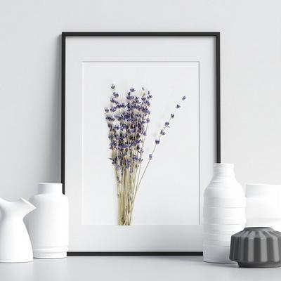라벤더 보테니컬 식물 그림 인테리어 액자 50x70 포스터 + 이케아액자