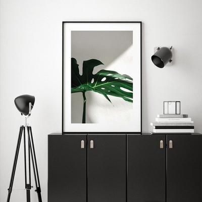 썬샤인 몬스테라 보테니컬 식물 그림 인테리어 액자 50x70 포스터 + 이케아액자