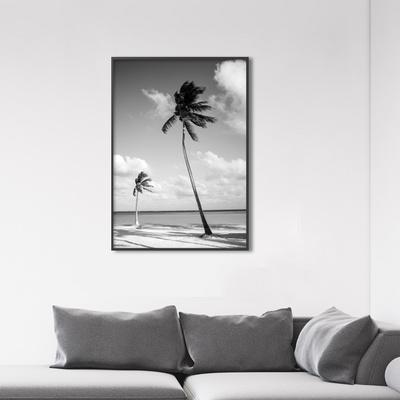 흑백 야자수 보테니컬 그림 인테리어 액자 50x70 포스터 + 피스크보액자