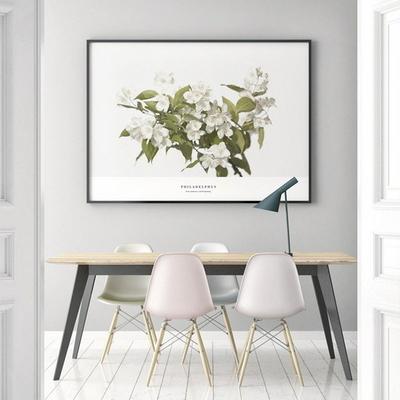 필라델푸스 꽃 액자 보테니컬 그림 인테리어 50x70 포스터 + 알루미늄액자
