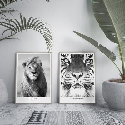 호랑이 동물 액자 인테리어 그림 50x70 포스터 + 이케아액자