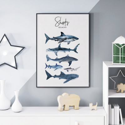 상어 남자 아이방 동물 그림 인테리어 액자 A3 포스터 (액자미포함)