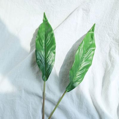 나뭇가지 조화 보태니컬 인테리어 스파티필럼 잎 5개