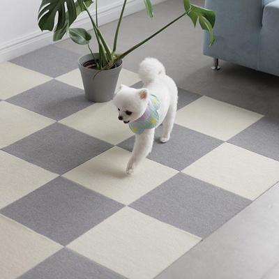 픽 모듈 미끄럼방지 강아지매트 모음전