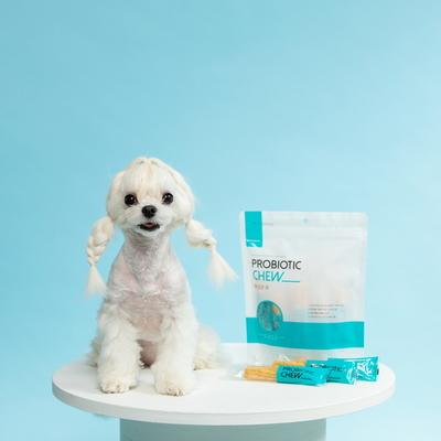 강아지 츄러스덴탈껌 유산균츄 2SET