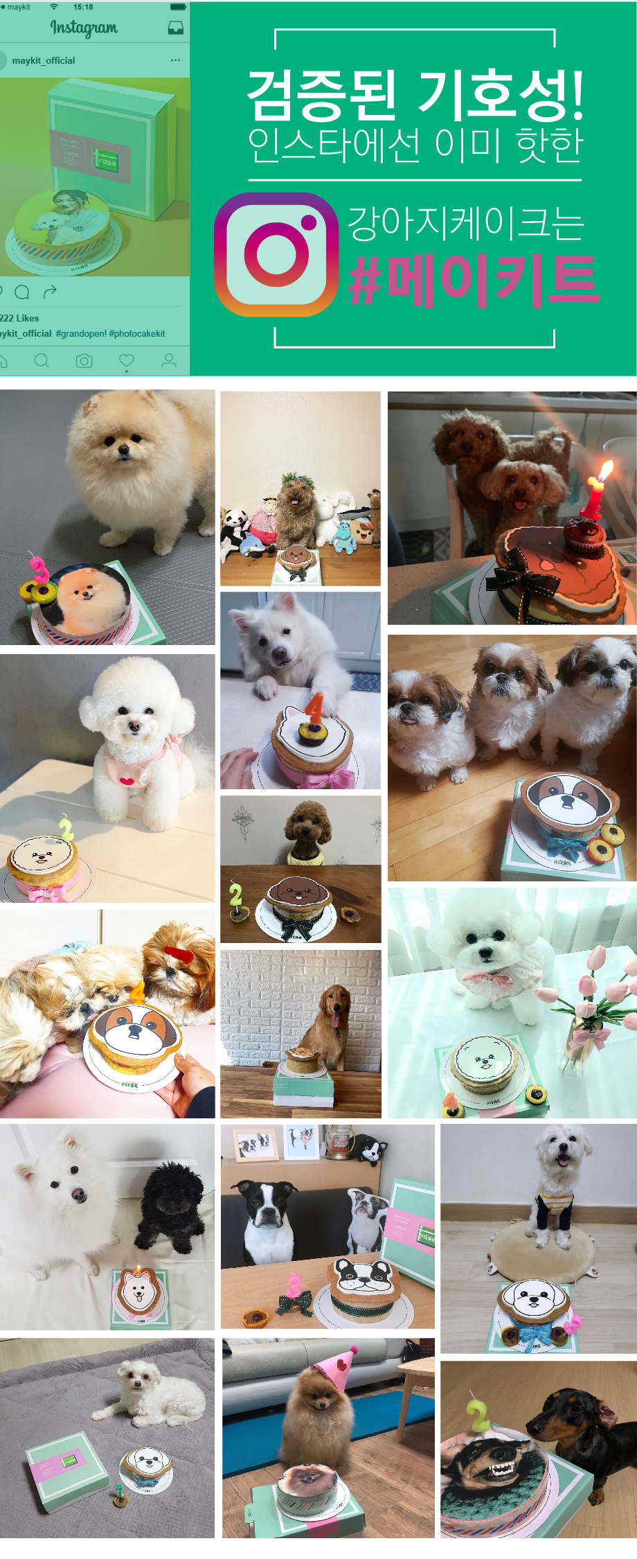 강아지 모양 케이크 골든리트리버 SHAPE CAKE KIT16,900원-메이키트펫샵, 강아지용품, 간식/영양제, 수제간식바보사랑강아지 모양 케이크 골든리트리버 SHAPE CAKE KIT16,900원-메이키트펫샵, 강아지용품, 간식/영양제, 수제간식바보사랑