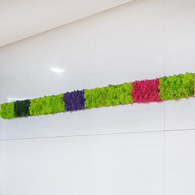 편백 스칸디아모스 포인트벽지 - 손쉬운 블럭형 DIY 중