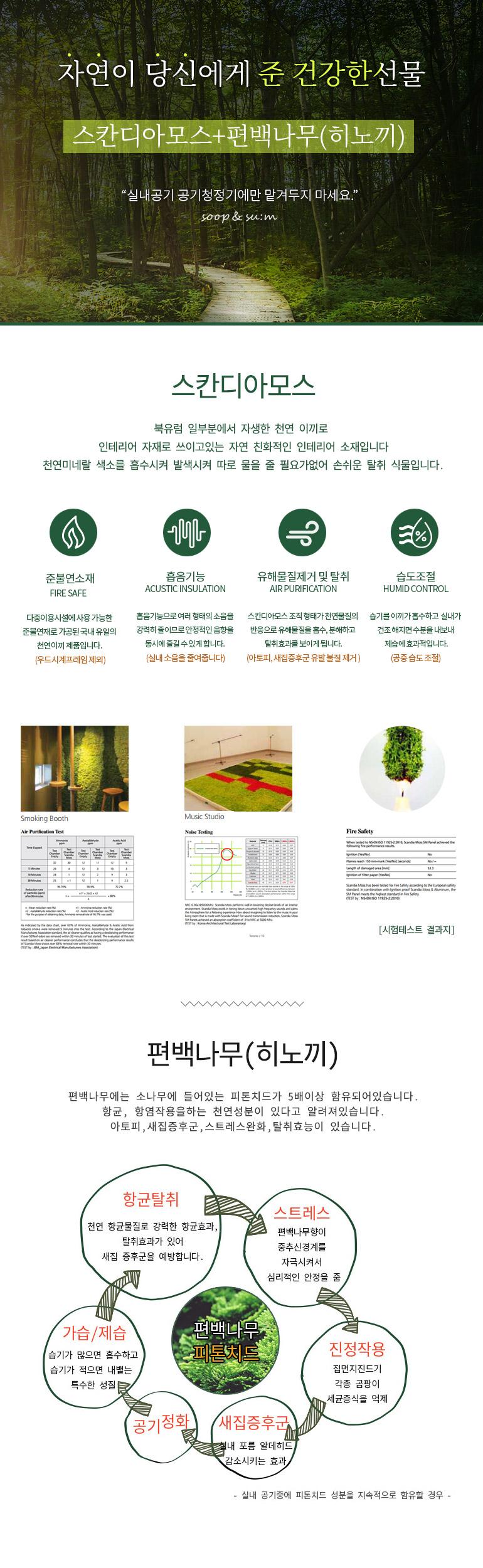 숲앤숨 편백 스칸디아모스 글라스 대1개 - 숲앤숨, 11,610원, 허브/다육/선인장, 공기정화식물