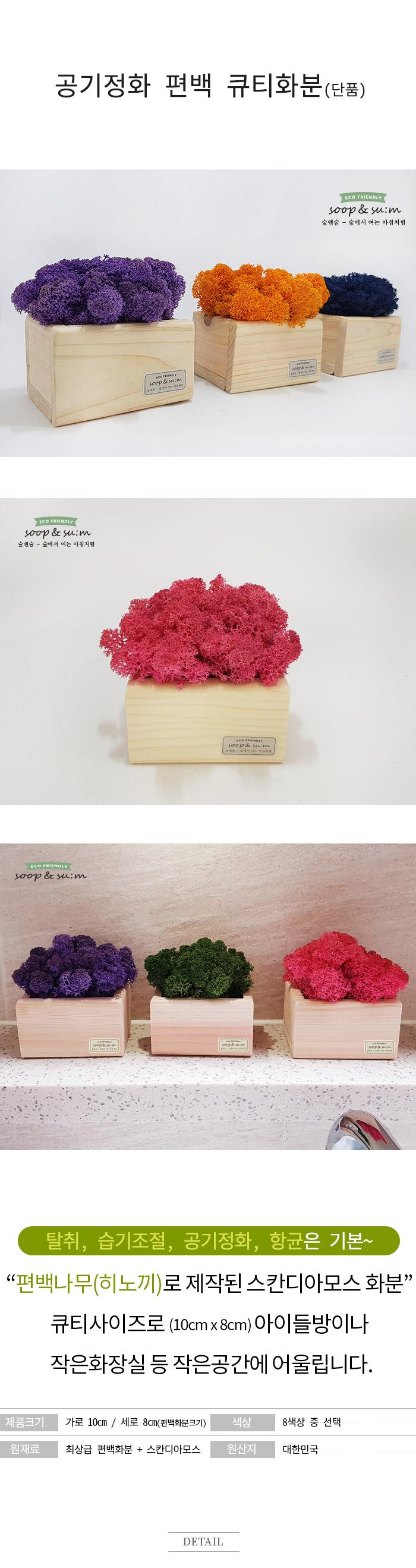 공기정화 편백 스칸디모스 큐티화분 - 클래식블루 - 숲앤숨, 12,510원, 조화, 화분세트