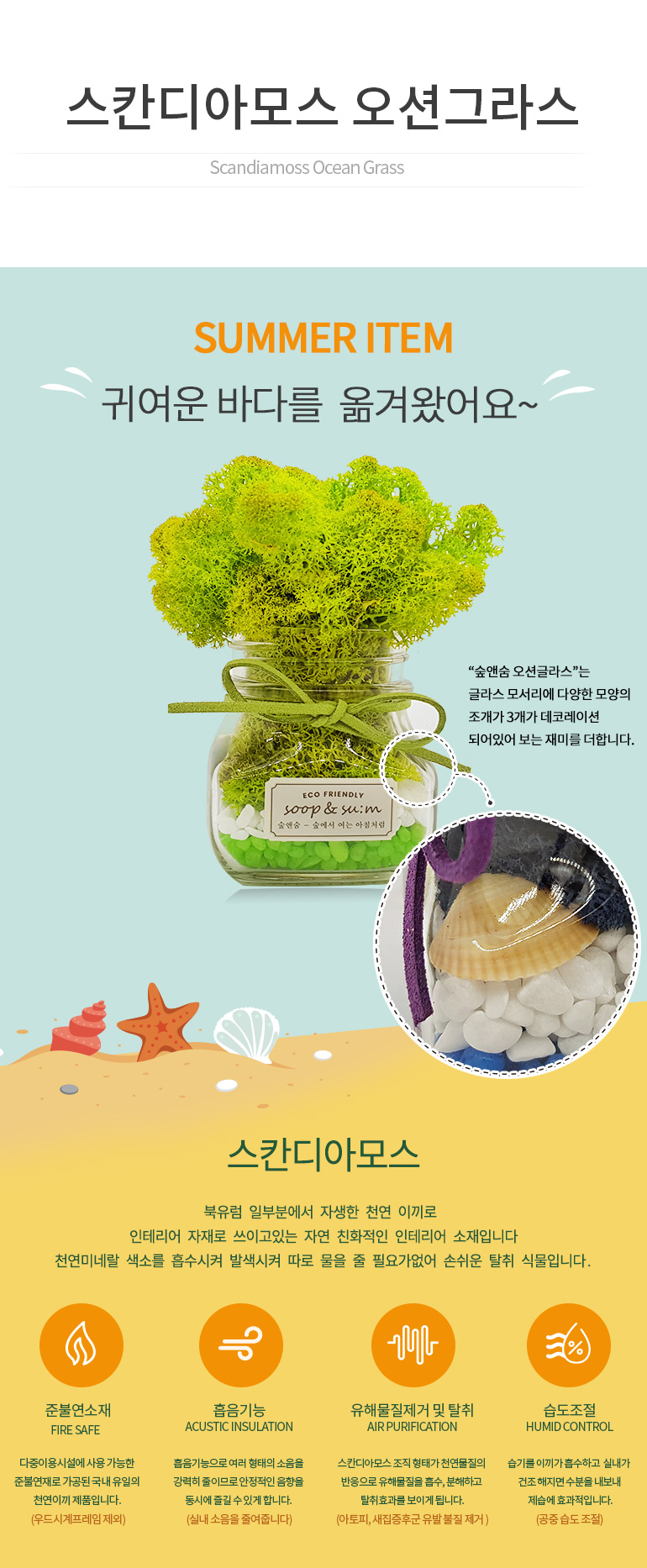 숲앤숨 스칸디아모스 오션그라스 - 숲앤숨, 18,810원, 허브/다육/선인장, 공기정화식물