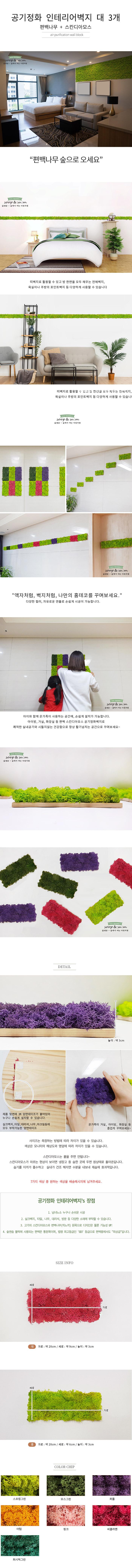 편백 스칸디아모스 포인트벽지 - 손쉬운 블럭형 DIY X 3개 - 숲앤숨, 34,290원, 장식/부자재, 벽장식