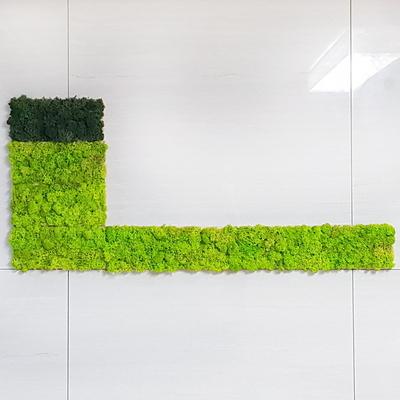 편백 스칸디아모스 포인트벽지 - 손쉬운 블럭형 DIY X 3개