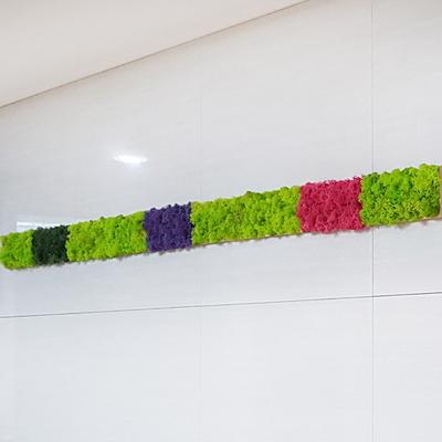 편백 스칸디아모스 포인트벽지 - 손쉬운 블럭형 DIY X 5개