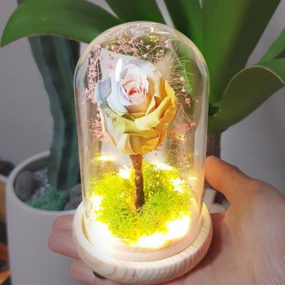 LED 유리돔 레인보우 로즈 무드등 - 프리저브드 드라이플라워