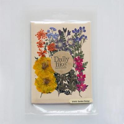 Dry flower - 08 garden design series