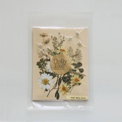 Dry flower - 03 white series
