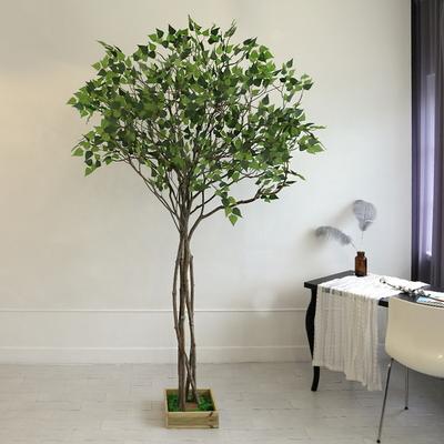 인조나무 조화나무 인테리어조화 내츄럴 자작나무 220 사방형