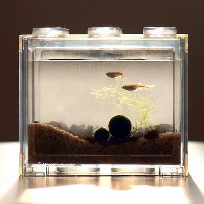 국산 마리모 친구 백운산 물고기 블럭어항 수초 키우기 DIY세트