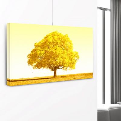 돈 들어오는 황금나무 사진 그림 액자 인테리어