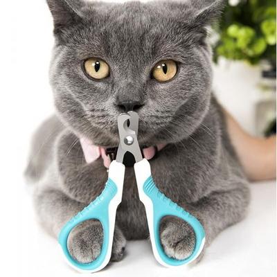 반려동물 애완 강아지 고양이 발톱깎기
