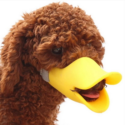 애완동물 실리콘 입마개 대사이즈