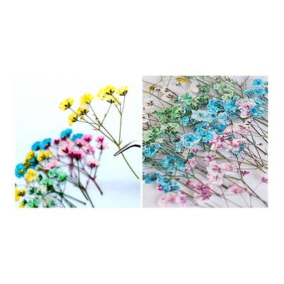 꽃보듬(압화) 안개꽃 세트