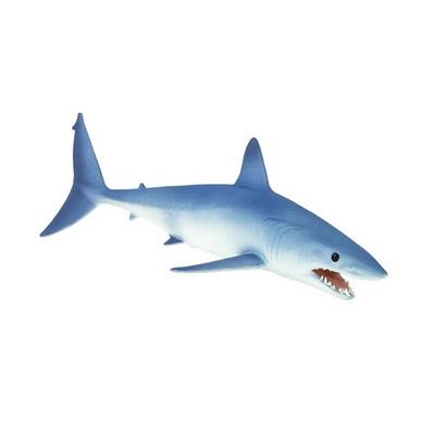 201929 청상아리 Mako Shark