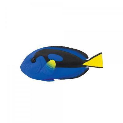100039 블루탱 Blue Tang