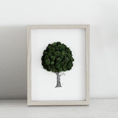 앨빈디자인 스칸디아모스 액자 1호 인테리어 공기정화식물