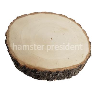 자연주의 버드나무 쉼터(대형)