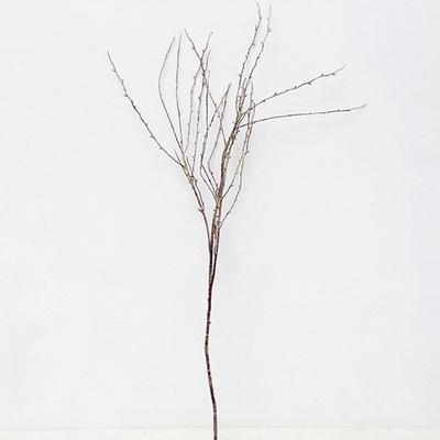 롱 슬림 나무가지 조화