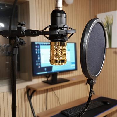 1인개인 방송장비 유튜브마이크 BM800-은회색