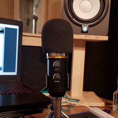 1인개인 방송장비 녹음 개인방송용 고품질 유튜브마이크 BM800 FL200
