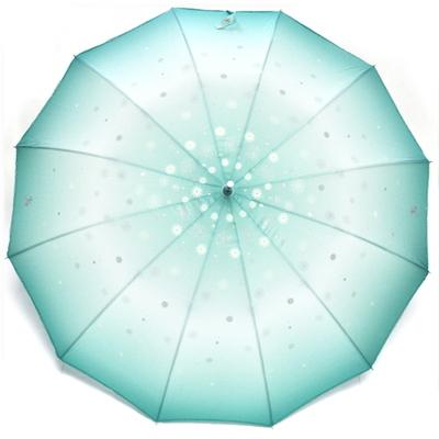 바림의 꿈꾸는 우산(퓨어민트)-장우산