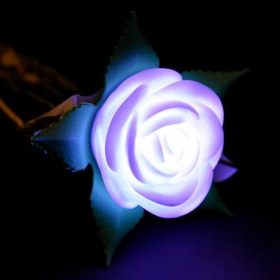 LED 한송이장미 (대) 2color