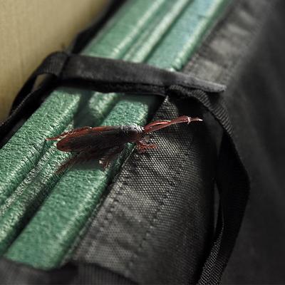 리얼바퀴벌레 모형