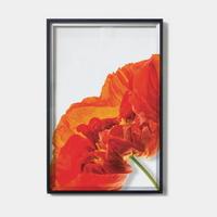 crystal frame-034