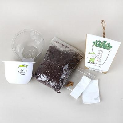 그린패밀리-99.9% 싹이나는화분