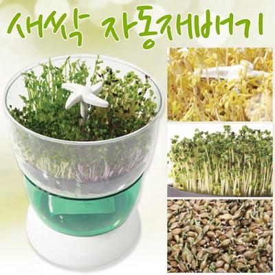 콩나물 새싹 자동재배기 청시루 SC-9000T