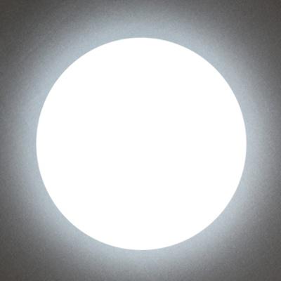 원형 심플 방등 LED 시폰 60W 주광색