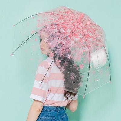 체리블라썸 돔모양 투명우산 / 벚꽃 장우산