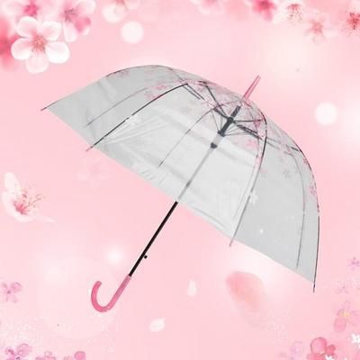 플라워핑크 투명우산 벚꽃 장우산