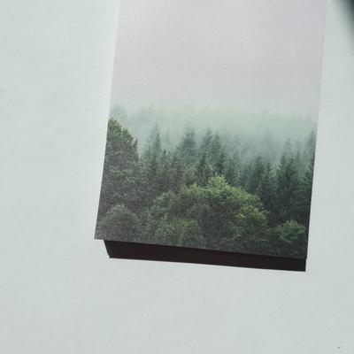 숲 메모지
