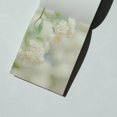 찔레꽃(ver.2) 메모지