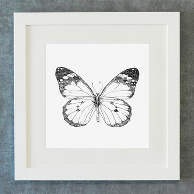FA056 스케치 드로잉 버터플라이 나비 정사각형 벽걸이 액자