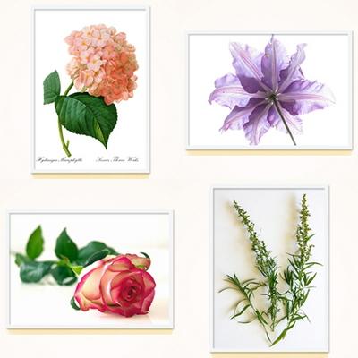 FAP02 식물 플라워 포스터 30종 대형 포스터
