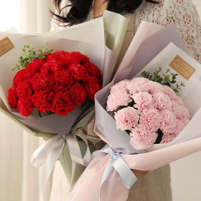 20송이 비누꽃 카네이션꽃다발